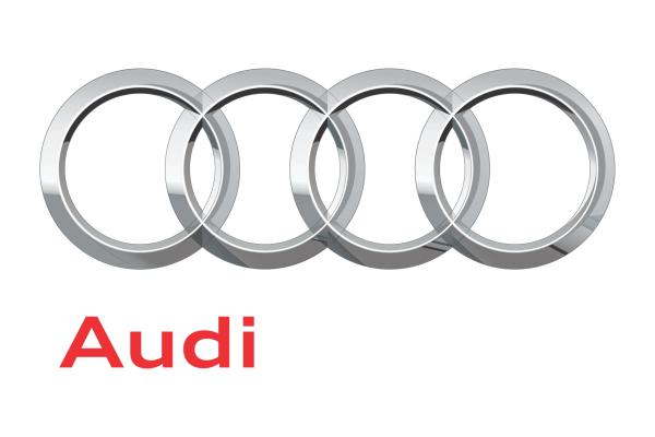 Cubiks Client Audi logo